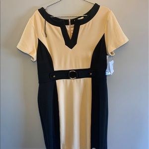 NWT Dress Barn tan and black fitted dress